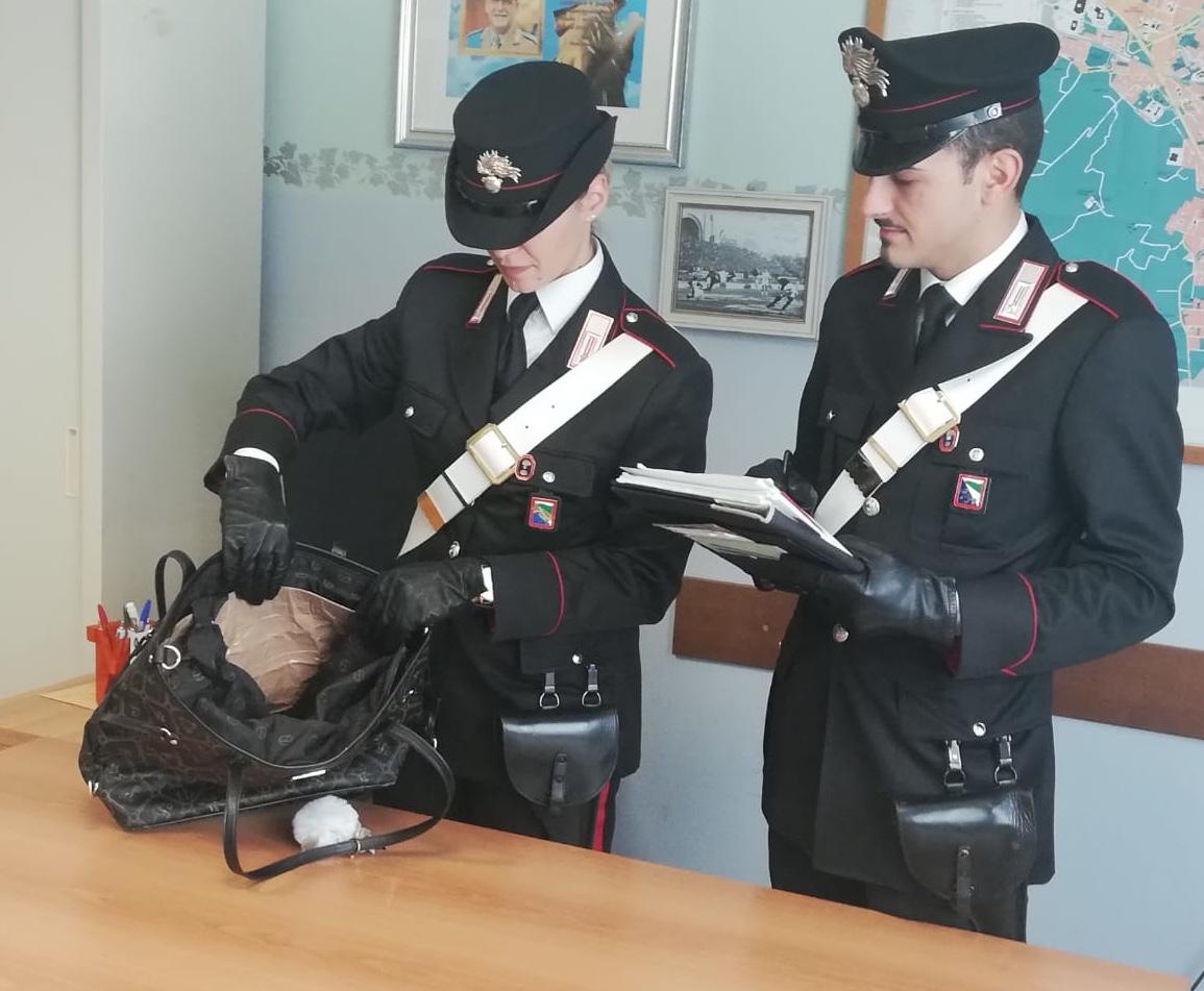 Furto all'Outlet di Castel Guelfo: arrestata coppia residente a Firenze