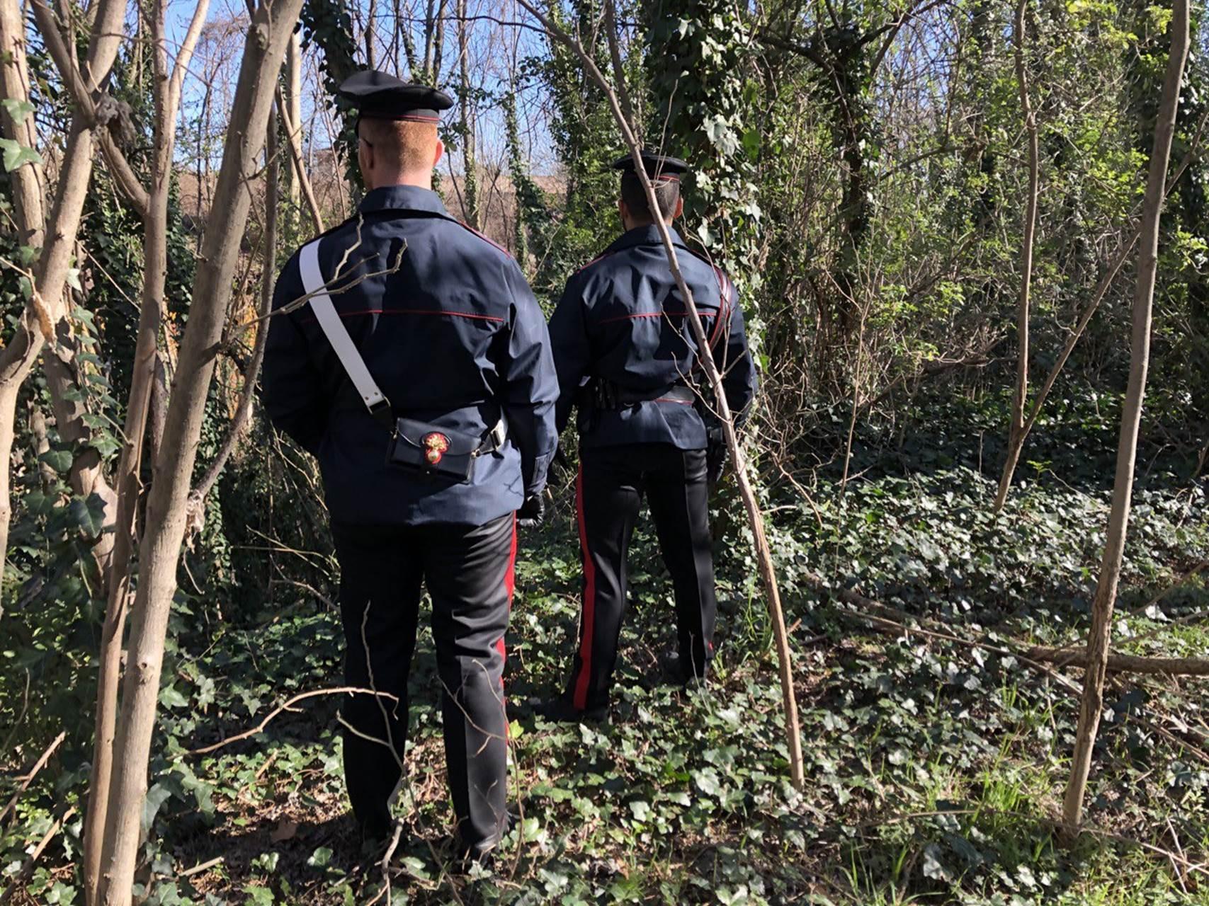 Piantagione di cannabis in zona Interporto: dopo le indagini, eseguiti due arresti domiciliari e una custodia in carcere