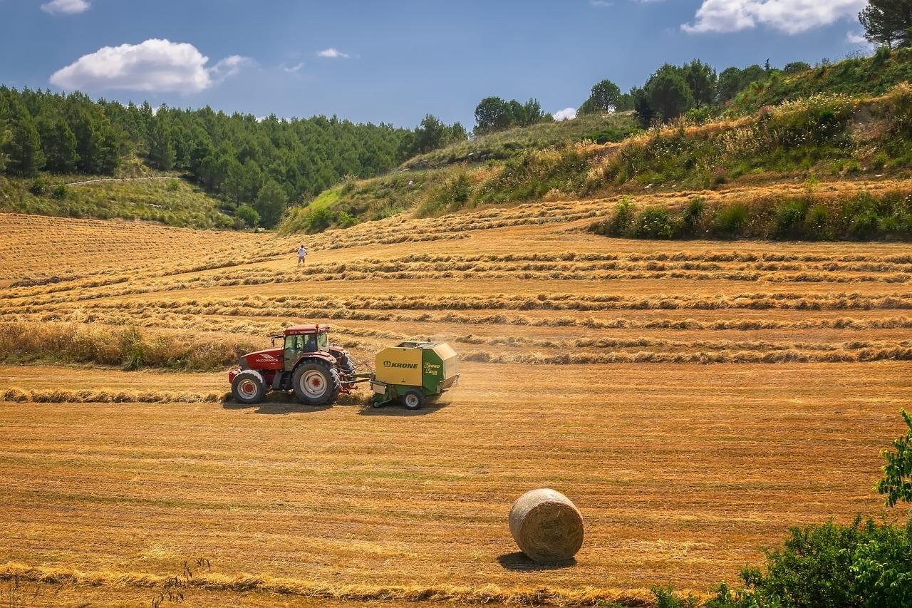 Regione E-R: un bando da 12,6 milioni di euro per le aziende agricole nelle zone montane e procedure semplificate per l'assegnazione dei carburanti agricoli